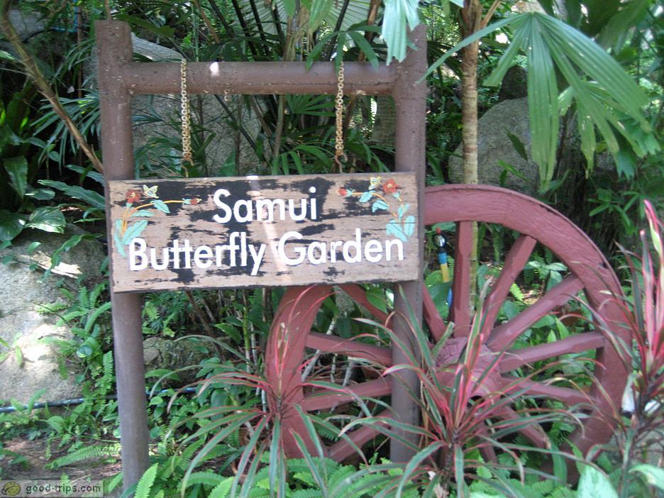 باغ پروانه ها