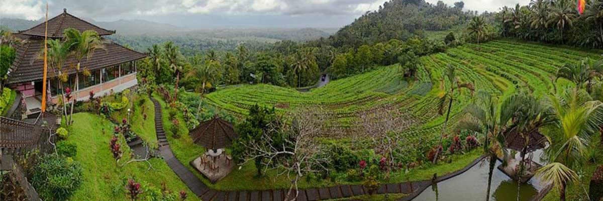 اندونزی بالی ارزان و زیبا